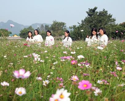 """Vườn hoa Yên Sơn - Địa chỉ chụp ảnh """"check in"""" mới của giới trẻ"""