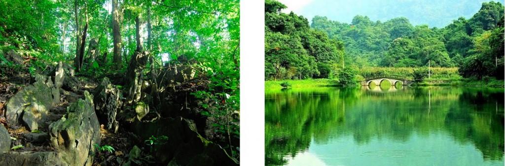 Vườn-quốc-gia-Cúc-Phương