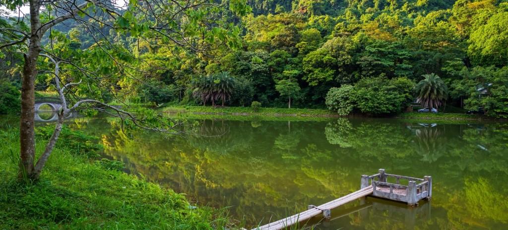 rừng Cúc Phương