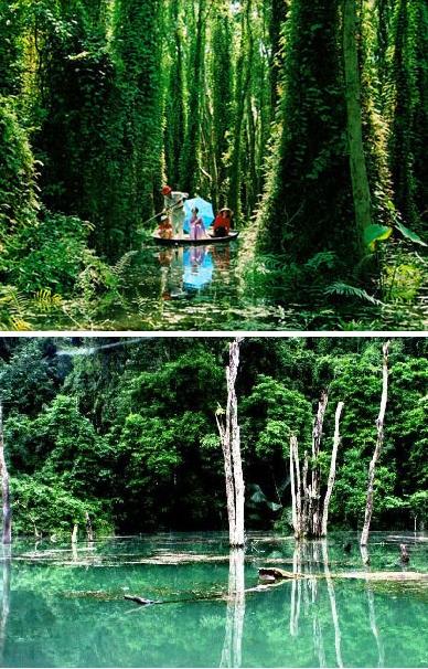hồ nước ở Cúc Phương
